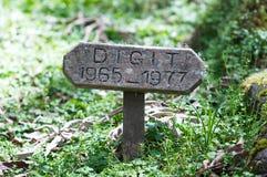 Het graf van het cijfer Stock Fotografie