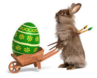 Het grappige konijn van de Paashaas met een kruiwagen en een groene Pasen Royalty-vrije Stock Fotografie