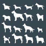 Het grappige van het het karakterbrood van de beeldverhaalhond witte silhouet in de vectorillustratie van de beeldverhaalstijl Stock Foto's