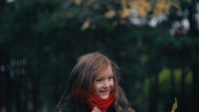 Het grappige, vrolijke leuke meisjeclose-up verzamelt gele de herfstbladeren in park langzame motie stock video