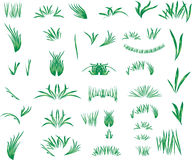 Het gras Royalty-vrije Stock Afbeeldingen