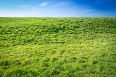 Het gras is altijd Groener Royalty-vrije Stock Afbeelding
