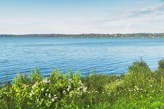 Het gras door het meer Royalty-vrije Stock Fotografie