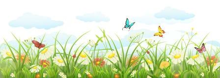 Het gras en de bloemen van de lente stock illustratie