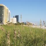Het gras en de gebouwen van het strand royalty-vrije stock afbeeldingen