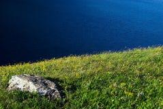Het gras en het water van de steen Stock Afbeeldingen