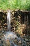 Het gras en het water van de zomer Royalty-vrije Stock Foto's