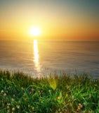 Het gras en het zeegezicht van de lente Royalty-vrije Stock Foto's