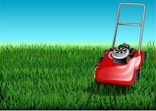 Het gras en maait Stock Fotografie