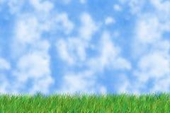Het gras is groen Stock Afbeeldingen