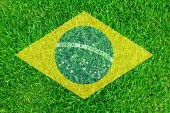 Het gras van Brazilië van Voetbalkampioenschap 2014 Royalty-vrije Stock Foto