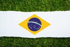 Het gras van Brazilië van Voetbalkampioenschap 2014 Stock Foto's