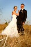 Het Gras van de bruid stock foto