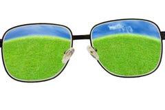Het gras van de glazenmening en blauwe hemel stock foto
