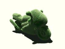 Het gras van de motorfiets Royalty-vrije Stock Afbeeldingen