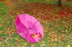 Het gras van de paraplu Royalty-vrije Stock Afbeelding