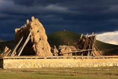 Het gras van de Prairie van de zonsondergang Royalty-vrije Stock Afbeeldingen