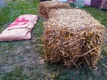 Het gras van de seizoenbaal Royalty-vrije Stock Afbeelding