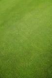 Het gras van de vloer Royalty-vrije Stock Fotografie