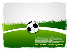 Het grasgebied van het voetbal Vector Illustratie