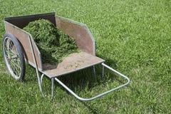 Het grasknipsels van de tuinkar Stock Foto