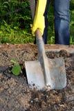 Het graven door schop Stock Fotografie