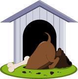Het graven van de hond voor been Royalty-vrije Stock Foto's