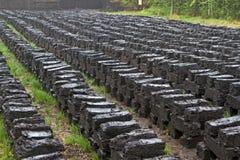 Het graven van de turf in Beieren, Duitsland Stock Fotografie