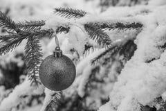 Het Greyscale zwart-witte Beautyful-de Snuisterij van het Kerstmisornament haning bij een Spar met Sneeuw royalty-vrije stock fotografie