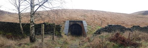 Het griezelige Kijken Tunnel in de Bossen stock foto's