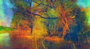 Het griezelige landschap van de kunst grunge - oud bos Royalty-vrije Stock Fotografie