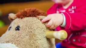Het grijpen van het oor van een paard stock video