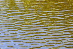 Het grijs-groene Water golft Achtergrond Royalty-vrije Stock Afbeeldingen