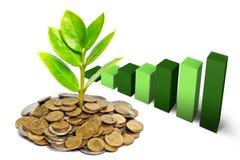 Het groeien van de boom op muntstukken Royalty-vrije Stock Afbeeldingen