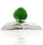 Het groeien van de boom van een boek Stock Afbeeldingen