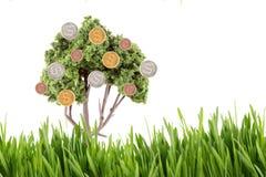 Het groeien van het geld op boom met gras Stock Fotografie