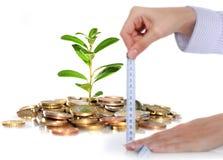 Het groeipercentage van inkomens. Stock Fotografie