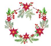 Het het groen kroon-symbool van waterverfkerstmis van de wintervakantie, met pijnboom evegreen takken en rode poinsettia flowrs,  vector illustratie