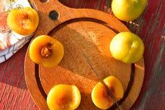 Het groenachtig gele hybride fruitkruis van pruim en abrikoos riep Pluots, apriums, apriplums, of plumcots Royalty-vrije Stock Afbeeldingen