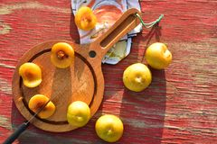 Het groenachtig gele hybride fruitkruis van pruim en abrikoos riep Pluots, apriums, apriplums, of plumcots Stock Fotografie