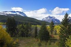 Het groene als gele hout van meren zowel royalty-vrije stock afbeeldingen