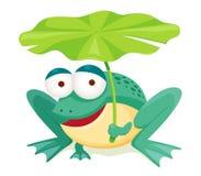 Het groene blad van de kikkerholding Royalty-vrije Stock Afbeelding