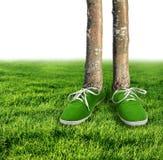 Het groene concept van de koolstofvoetafdruk Stock Afbeelding