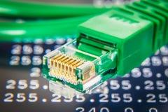 Het groene detail van de ethernetkabel stock foto