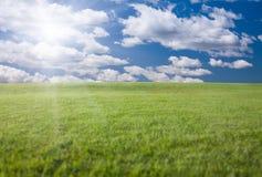 Het groene Gebied van het Gras, Blauwe Hemel en Zon Royalty-vrije Stock Foto