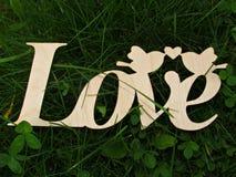 het groene gras van de liefdeð ¾ F aard Stock Foto