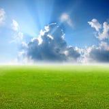 Het groene gras van Nice met blauwe hemelachtergrond Royalty-vrije Stock Afbeeldingen