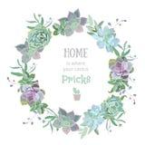 Het groene kleurrijke succulente vectorontwerp van Echeveria om kader Stock Foto's