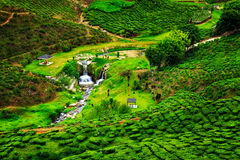 Het groene land Stock Foto
