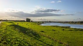 Het groene landschap van de heuvelrivier stock afbeeldingen